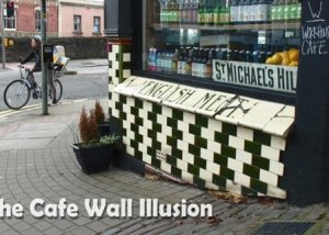 cafe wall illusion